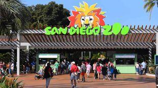 virtual tours san diego zoo