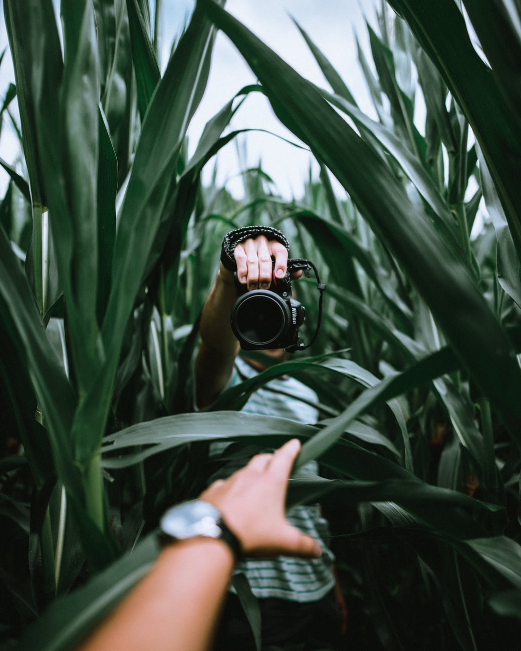 How to Find the Best Photographer Near You